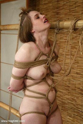 Photo number 8 from Tracey Hilton shot for Hogtied on Kink.com. Featuring Tracey Hilton in hardcore BDSM & Fetish porn.