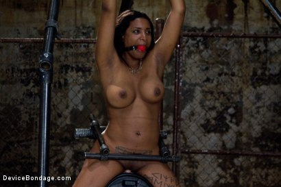 Photo number 3 from Submission Accomplished shot for devicebondage on Kink.com. Featuring Mia Stiletto in hardcore BDSM & Fetish porn.