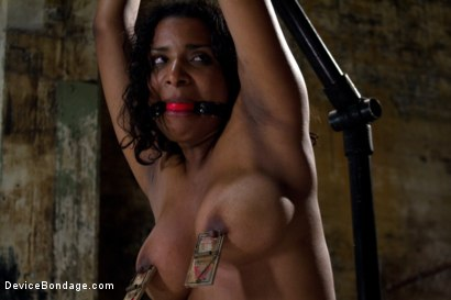 Photo number 7 from Submission Accomplished shot for Device Bondage on Kink.com. Featuring Mia Stiletto in hardcore BDSM & Fetish porn.
