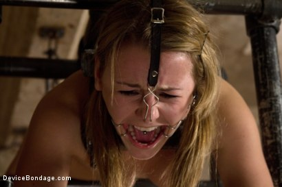 Photo number 6 from This Little Piggy Can Fly shot for Device Bondage on Kink.com. Featuring Jessie Cox in hardcore BDSM & Fetish porn.
