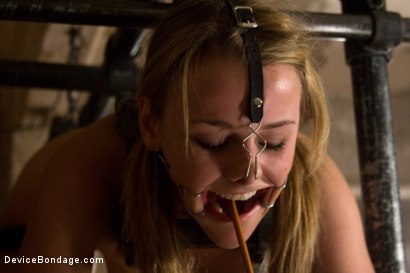 Photo number 10 from This Little Piggy Can Fly shot for Device Bondage on Kink.com. Featuring Jessie Cox in hardcore BDSM & Fetish porn.