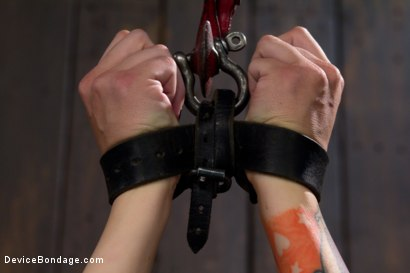 Photo number 3 from Warning: Brutal Play <br> This Scene Involves Intense Pain Play shot for Device Bondage on Kink.com. Featuring Krysta Kaos in hardcore BDSM & Fetish porn.