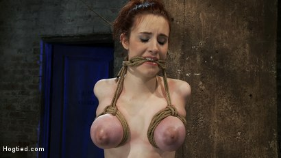 Photo number 11 from Huge titted 19yr old suffers a category 5 suspension<br>  Hung by boobs, elbows and pussy. shot for Hogtied on Kink.com. Featuring Iona Grace and Isis Love in hardcore BDSM & Fetish porn.