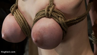 Photo number 6 from Huge titted 19yr old suffers a category 5 suspension<br>  Hung by boobs, elbows and pussy. shot for Hogtied on Kink.com. Featuring Iona Grace and Isis Love in hardcore BDSM & Fetish porn.