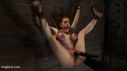 Photo number 15 from 19yr old with huge natural tits is suspended to a wall<br>her breasts are tied to hold up her legs. shot for Hogtied on Kink.com. Featuring Iona Grace and Isis Love in hardcore BDSM & Fetish porn.