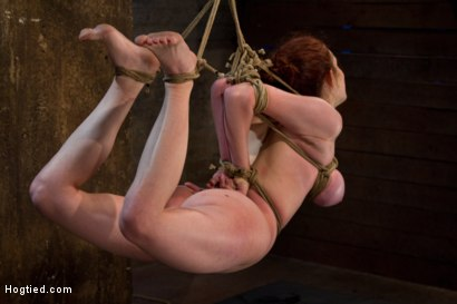Photo number 12 from Hot 19 yr old suffers a category 5 Hogtied suspension. <br> Isis Love makes her cum over and over  shot for Hogtied on Kink.com. Featuring Iona Grace and Isis Love in hardcore BDSM & Fetish porn.
