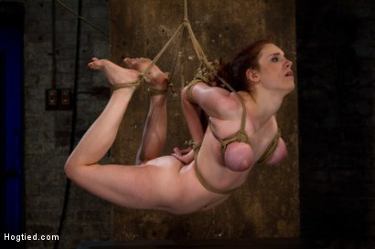 Photo number 5 from Hot 19 yr old suffers a category 5 Hogtied suspension. <br> Isis Love makes her cum over and over  shot for Hogtied on Kink.com. Featuring Iona Grace and Isis Love in hardcore BDSM & Fetish porn.