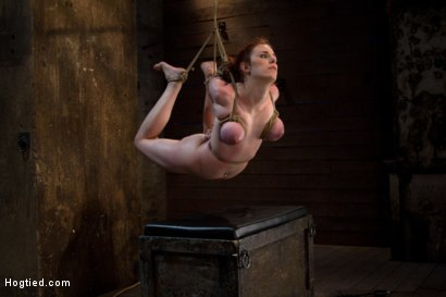 Photo number 10 from Hot 19 yr old suffers a category 5 Hogtied suspension. <br> Isis Love makes her cum over and over  shot for Hogtied on Kink.com. Featuring Iona Grace and Isis Love in hardcore BDSM & Fetish porn.