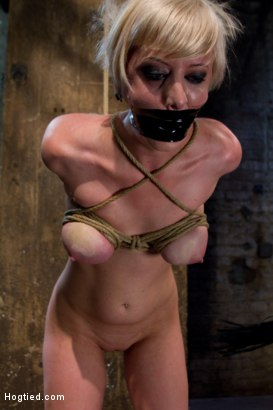 Photo number 5 from Hot Blond with PERFECT BODY, natural tits, severely bound, gagged and abused<br>All on screen tying shot for Hogtied on Kink.com. Featuring Cherry Torn in hardcore BDSM & Fetish porn.