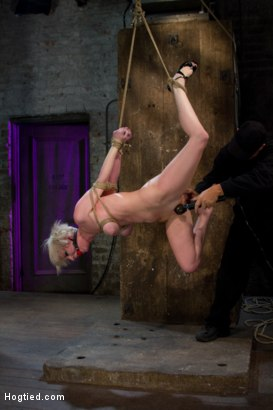 Photo number 8 from Hot Blond with PERFECT BODY, natural tits, severely bound, gagged and abused<br>All on screen tying shot for Hogtied on Kink.com. Featuring Cherry Torn in hardcore BDSM & Fetish porn.