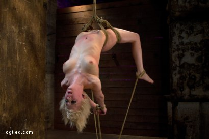 Photo number 11 from Hot blond suffers though a brutal Category 5 inverted suspension.<br>How many orgasms can she take?  shot for Hogtied on Kink.com. Featuring Cherry Torn in hardcore BDSM & Fetish porn.