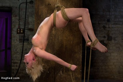 Photo number 14 from Hot blond suffers though a brutal Category 5 inverted suspension.<br>How many orgasms can she take?  shot for Hogtied on Kink.com. Featuring Cherry Torn in hardcore BDSM & Fetish porn.