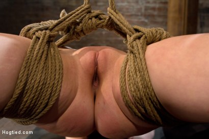 Photo number 3 from Hot blond suffers though a brutal Category 5 inverted suspension.<br>How many orgasms can she take?  shot for Hogtied on Kink.com. Featuring Cherry Torn in hardcore BDSM & Fetish porn.