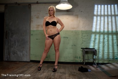 Photo number 1 from The Training of Tara Lynn Foxx, Day One shot for The Training Of O on Kink.com. Featuring Tara Lynn Foxx and Aiden Starr in hardcore BDSM & Fetish porn.