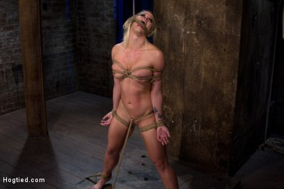 Photo number 11 from California fitness model and athlete<br>Bound helpless, screaming and cumming<br>Hard helpless body shot for Hogtied on Kink.com. Featuring Holly Heart in hardcore BDSM & Fetish porn.