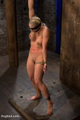 Photo number 10 from Very intense SM scene with hot blond.<br>Pushed to the edge of sanity and back.<br>Brutal Orgasms shot for Hogtied on Kink.com. Featuring Holly Heart in hardcore BDSM & Fetish porn.