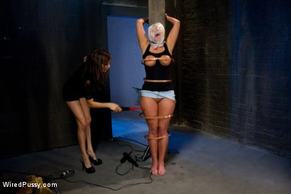 Photo number 3 from Big tittied blonde MILF gets shocked and made to cum.  shot for Wired Pussy on Kink.com. Featuring Princess Donna Dolore and Mellanie Monroe in hardcore BDSM & Fetish porn.