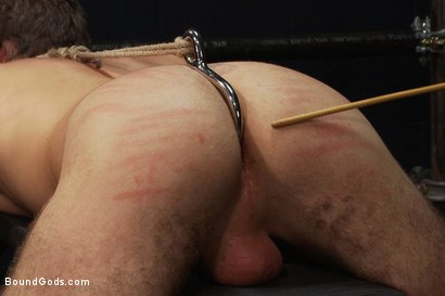 Photo number 11 from Hayden Russo bound for the first time shot for Bound Gods on Kink.com. Featuring Van Darkholme, Matthew Singer and Hayden Russo in hardcore BDSM & Fetish porn.