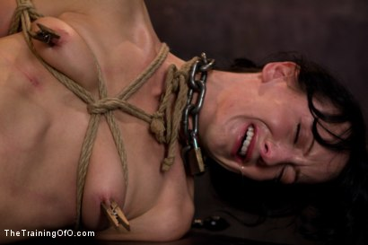 Photo number 6 from Young Rope Slut   Gets a Full Day of Intense Bondage - Live shot for The Training Of O on Kink.com. Featuring Elise Graves in hardcore BDSM & Fetish porn.