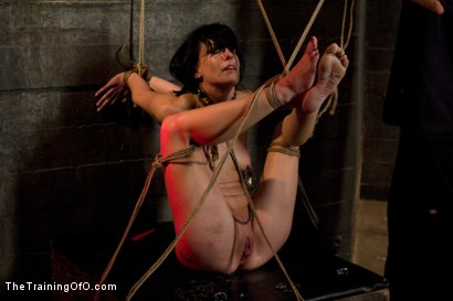 Photo number 11 from Young Rope Slut <br>Gets a Full Day of Intense Bondage - Live shot for The Training Of O on Kink.com. Featuring Elise Graves in hardcore BDSM & Fetish porn.