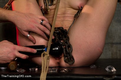 Photo number 9 from Young Rope Slut <br>Gets a Full Day of Intense Bondage - Live shot for The Training Of O on Kink.com. Featuring Elise Graves in hardcore BDSM & Fetish porn.
