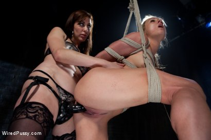 Photo number 10 from Sexy Milf Tied Up and Dominated shot for Wired Pussy on Kink.com. Featuring Princess Donna Dolore and Amanda Blow in hardcore BDSM & Fetish porn.