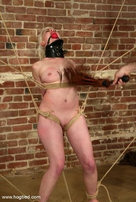 Photo number 7 from Lorelei Lee and Torque shot for Hogtied on Kink.com. Featuring Torque and Lorelei Lee in hardcore BDSM & Fetish porn.