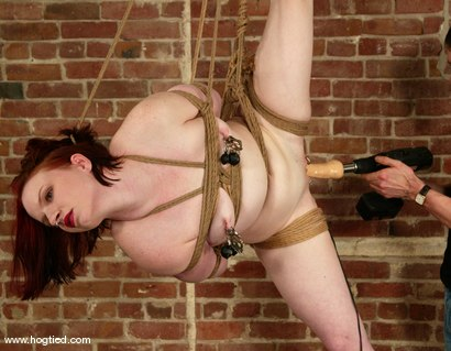 Photo number 3 from Claire Adams shot for Hogtied on Kink.com. Featuring Claire Adams in hardcore BDSM & Fetish porn.