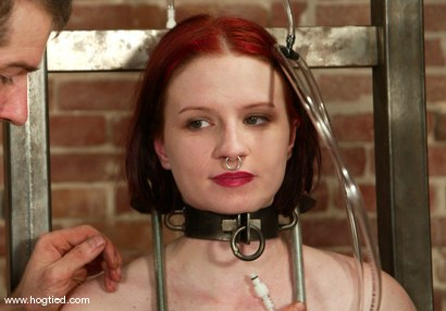 Photo number 15 from Claire Adams shot for Hogtied on Kink.com. Featuring Claire Adams in hardcore BDSM & Fetish porn.