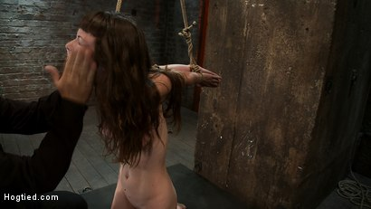 Photo number 15 from Girl next door suffers hardest hour on the internet<br> No breaks, 4 positions, on screen tying! shot for Hogtied on Kink.com. Featuring Seda and Rain DeGrey in hardcore BDSM & Fetish porn.