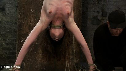 Photo number 11 from Girl next door put upside down, severely flogged & made to cum<br>On screen tying and real BDSM play shot for Hogtied on Kink.com. Featuring Seda and Rain DeGrey in hardcore BDSM & Fetish porn.