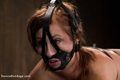 Photo number 14 from Strapped down and ready to ride. shot for Device Bondage on Kink.com. Featuring Charlie Ann in hardcore BDSM & Fetish porn.