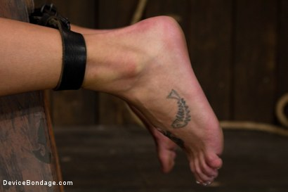 Photo number 3 from Strapped down and ready to ride. shot for Device Bondage on Kink.com. Featuring Charlie Ann in hardcore BDSM & Fetish porn.