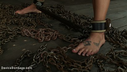Photo number 12 from This is What Hard Use Looks Like shot for Device Bondage on Kink.com. Featuring Charlie Ann in hardcore BDSM & Fetish porn.