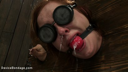Photo number 10 from This is What Hard Use Looks Like shot for Device Bondage on Kink.com. Featuring Charlie Ann in hardcore BDSM & Fetish porn.