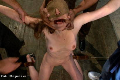Photo number 5 from Bondage Gang Bang Test Shoot shot for Public Disgrace on Kink.com. Featuring James Deen, Mickey Mod, Calixto, Seda, Bobby Bends and Lou Davis in hardcore BDSM & Fetish porn.