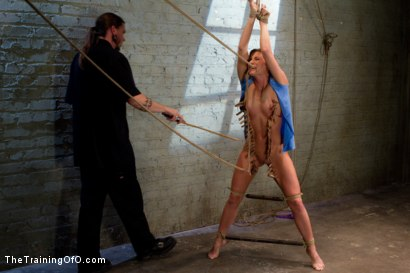 Photo number 2 from Ariel X Suffers Beautifully in Tight Bondage and Intense Torture shot for The Training Of O on Kink.com. Featuring Ariel X and The Pope in hardcore BDSM & Fetish porn.