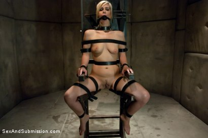 Photo number 4 from Sex Offender shot for Sex And Submission on Kink.com. Featuring Mark Davis and Tara Lynn Foxx in hardcore BDSM & Fetish porn.