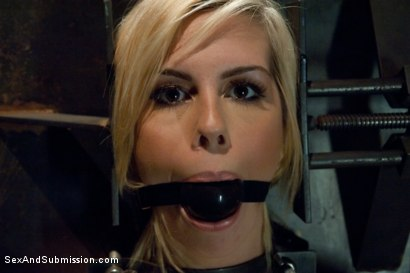 Photo number 7 from Sex Offender shot for Sex And Submission on Kink.com. Featuring Mark Davis and Tara Lynn Foxx in hardcore BDSM & Fetish porn.