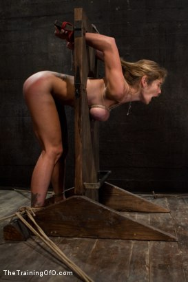 Photo number 12 from Hard Bodied Slut, Felony, is Torn Apart   During a Long Day of Brutal Torment shot for The Training Of O on Kink.com. Featuring Felony and The Pope in hardcore BDSM & Fetish porn.