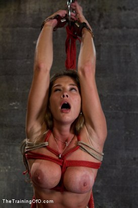 Photo number 14 from Hard Bodied Slut, Felony, is Torn Apart   During a Long Day of Brutal Torment shot for The Training Of O on Kink.com. Featuring Felony and The Pope in hardcore BDSM & Fetish porn.