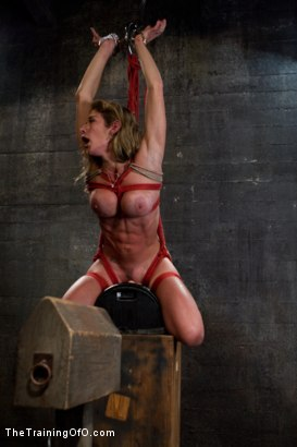 Photo number 7 from Hard Bodied Slut, Felony, is Torn Apart <br>During a Long Day of Brutal Torment shot for The Training Of O on Kink.com. Featuring Felony and The Pope in hardcore BDSM & Fetish porn.