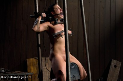 Photo number 12 from I'm Thankful for Tit Crushers shot for Device Bondage on Kink.com. Featuring Angelica Raven in hardcore BDSM & Fetish porn.