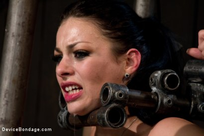Photo number 14 from I'm Thankful for Tit Crushers shot for Device Bondage on Kink.com. Featuring Angelica Raven in hardcore BDSM & Fetish porn.