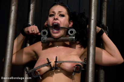 Photo number 3 from I'm Thankful for Tit Crushers shot for Device Bondage on Kink.com. Featuring Angelica Raven in hardcore BDSM & Fetish porn.
