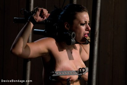 Photo number 13 from I'm Thankful for Tit Crushers shot for Device Bondage on Kink.com. Featuring Angelica Raven in hardcore BDSM & Fetish porn.