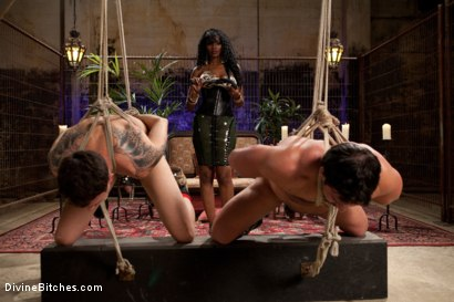Photo number 14 from If Only You Would Have Made My Pussy Purrrrrrrrrr shot for Divine Bitches on Kink.com. Featuring Derrick P., Nyomi Banxxx and Vince Ferelli in hardcore BDSM & Fetish porn.