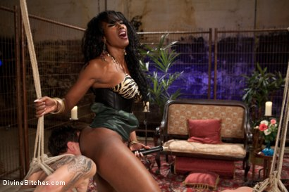 Photo number 11 from If Only You Would Have Made My Pussy Purrrrrrrrrr shot for Divine Bitches on Kink.com. Featuring Derrick P., Nyomi Banxxx and Vince Ferelli in hardcore BDSM & Fetish porn.