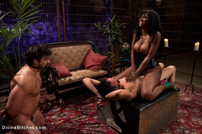 Photo number 8 from If Only You Would Have Made My Pussy Purrrrrrrrrr shot for Divine Bitches on Kink.com. Featuring Derrick P., Nyomi Banxxx and Vince Ferelli in hardcore BDSM & Fetish porn.