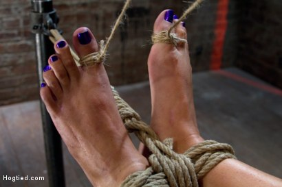 Photo number 9 from Extreme Predicament Bondage<br>Huge Nipples Tied to Toes, How Long Can the Abs Hold Out? shot for Hogtied on Kink.com. Featuring Wenona in hardcore BDSM & Fetish porn.